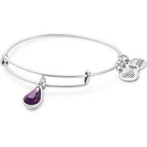 NWT Alex Ani February Birthstone Bangle Bracelet